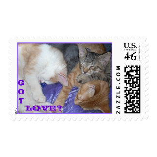 Kittens GOT LOVE? Postage