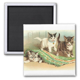 Kittens Hide and Seek 2 Inch Square Magnet