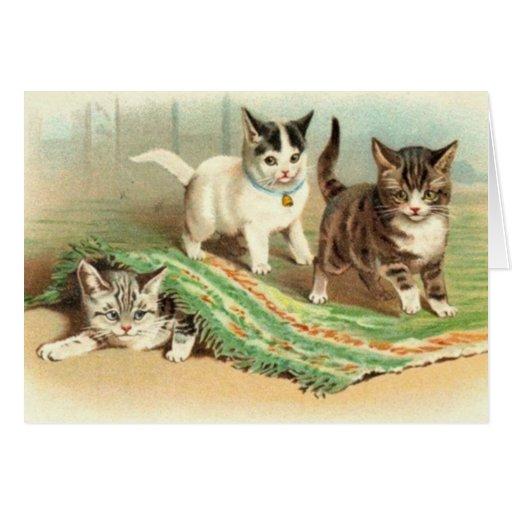 Kittens Hide and Seek Cards