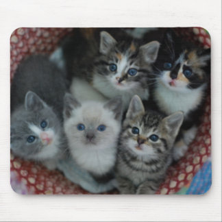 Kittens In A Basket Mouse Pad