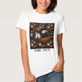Kittens in a Bowl with Pattern T Shirt