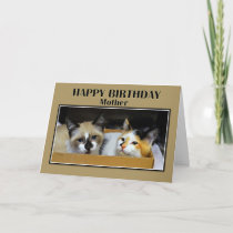 Kittens in a Box Mother Happy Birthday Card