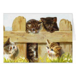 Kittens in a Fence Card