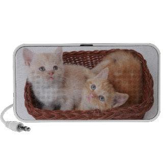 Kittens in basket mini speaker