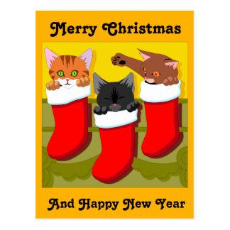 Kittens In Christmas Stockings Postcard