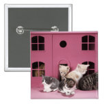 Kittens in doll's house button