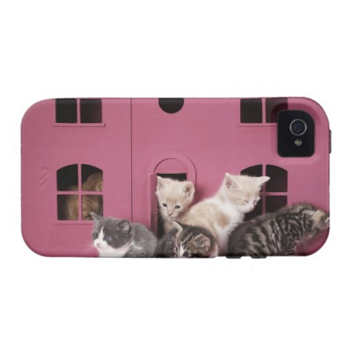 Kittens in doll's house iPhone 4 case