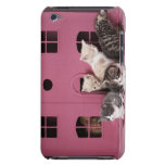 Kittens in doll's house iPod touch case
