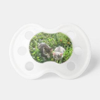 Kittens in Grass Pacifier
