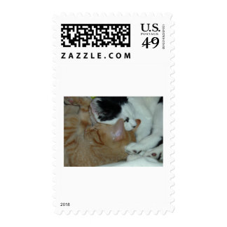 Kittens in Love Postage Stamp