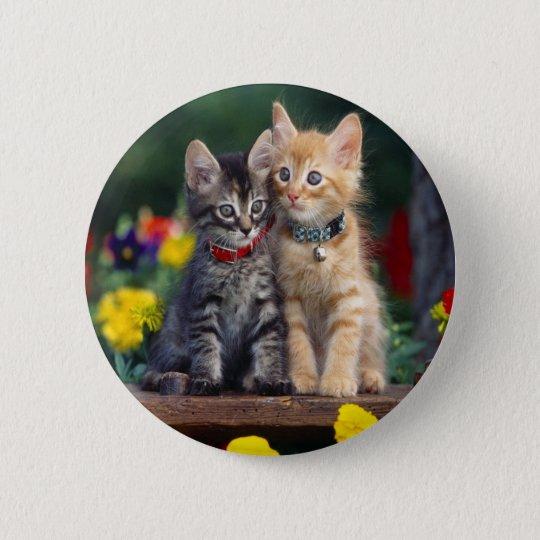 Kittens In The Garden Pinback Button