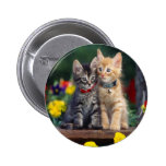 Kittens In The Garden Pinback Buttons