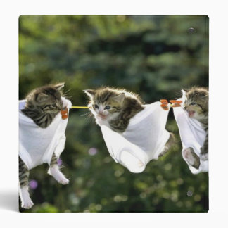 Kittens in underwear on clothesline 3 ring binder