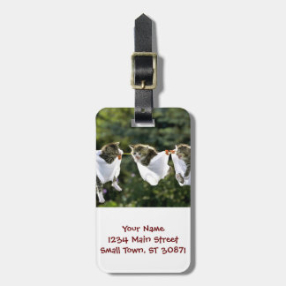 Kittens in underwear on clothesline bag tag