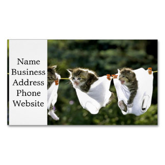 Kittens in underwear on clothesline business card magnet