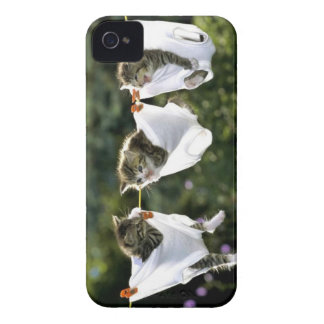 Kittens in underwear on clothesline Case-Mate iPhone 4 case
