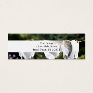 Kittens in underwear on clothesline mini business card