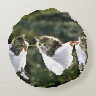 Kittens in underwear on clothesline round pillow