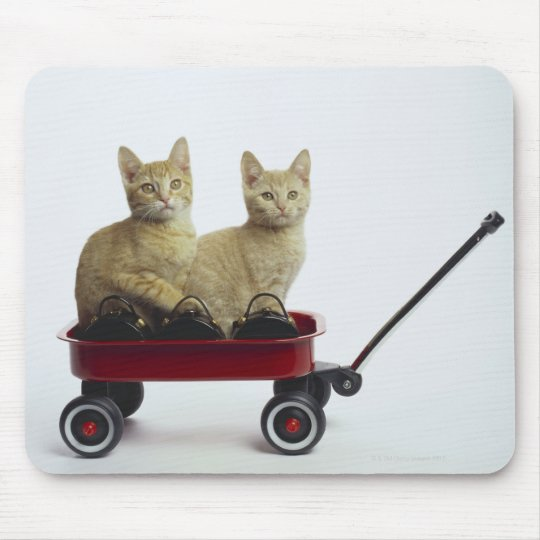 Kittens in wagon mouse pad