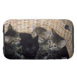 kittens iPhone 3 tough case