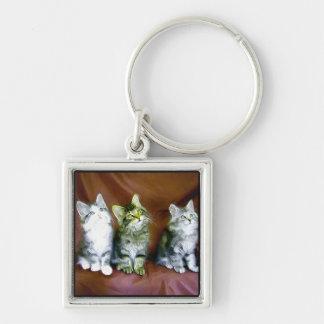 Kittens keychain