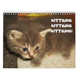 KITTENS, KITTENS, KITTENS! calendar