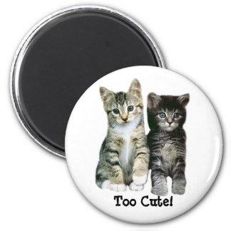 Kittens Magnet Too Cute
