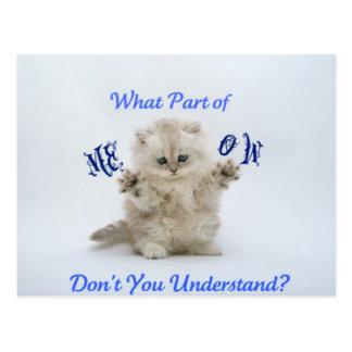 Kittens Meow Attitude Postcard