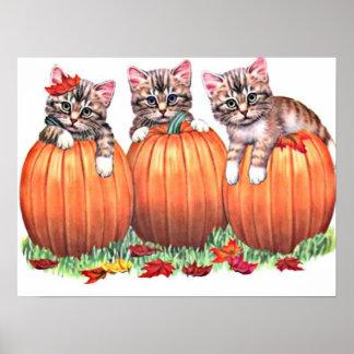 Kittens on Pumpkins Print Poster