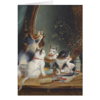 Kittens Play with a Mirror Card