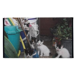 Kittens Playing iPad Folio Covers