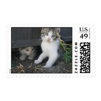 Kittens Playing on the Farm Stamps
