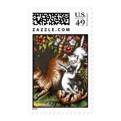 Kittens Playing Postage