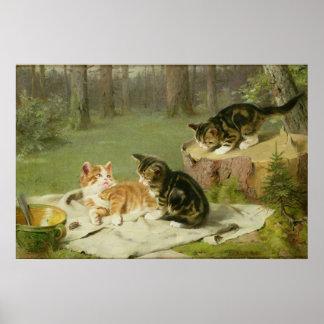 Kittens Playing Poster