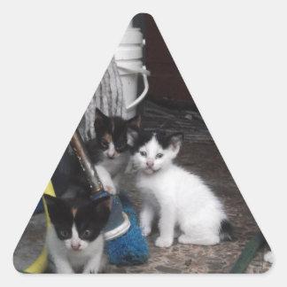 Kittens Playing Triangle Sticker