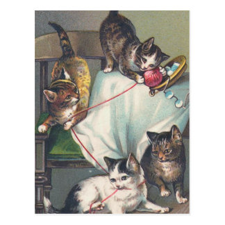 """Kittens Playing with Knitting Wool"" Postcard"