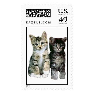 Kittens Postage