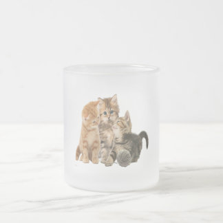 Kittens products frosted glass coffee mug