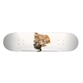 Kittens products skateboard