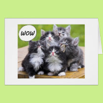 """KITTENS SAY WE FOUND OUT U R ON YOUR """"50th"""" LIFE Card"""