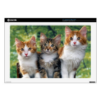 """Kittens Decal For 17"""" Laptop"""