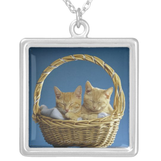 Kittens sleeping in basket silver plated necklace