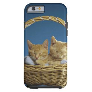 Kittens sleeping in basket tough iPhone 6 case