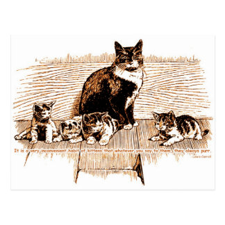 Kittens: They Always Purr Postcard