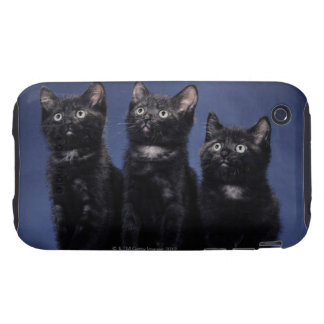 Kittens Tough iPhone 3 Covers