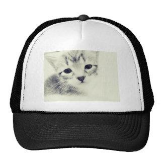 Kittens Trucker Hat