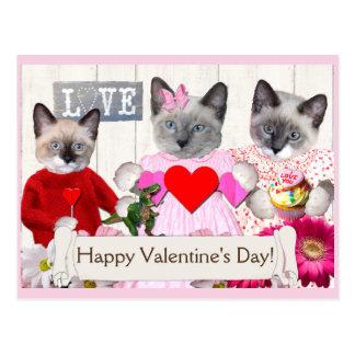 Kittens Valentine's Day Postcard