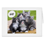 KITTENS WANT TO WISH BEST FRIEND HAPPY BIRTHDAY GREETING CARD