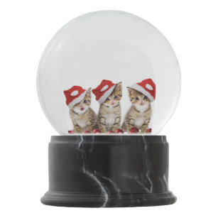 Kittens Wearing Santa Hat Snow Globe