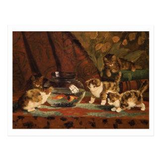 Kittens with Goldfish by Eugéne Lambert Postcard